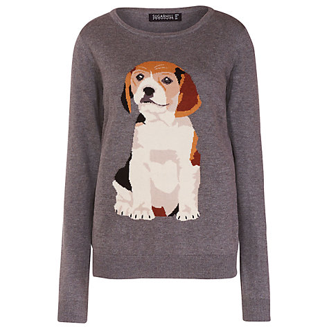 Beagle Jumper