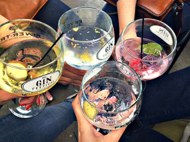 ginfest4