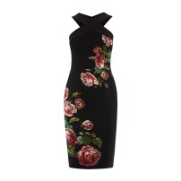 Oasis Sale Pencil Dress