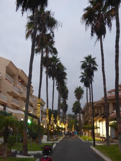 Tenerife 15