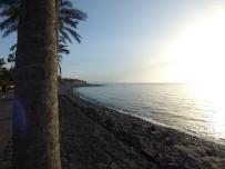 Tenerife 7