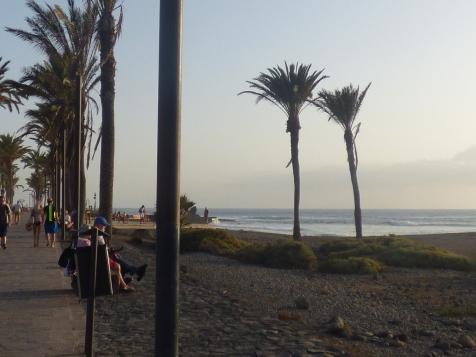 Tenerife 8