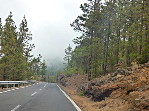 Road Trip 14
