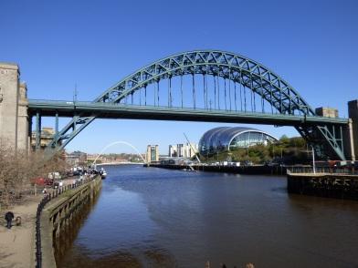 Newcastle 20
