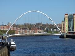 Newcastle 22