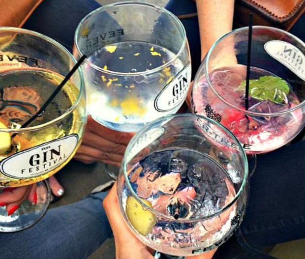 Gin Day 4